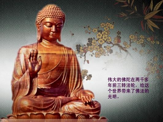 从不成思议处认知佛法