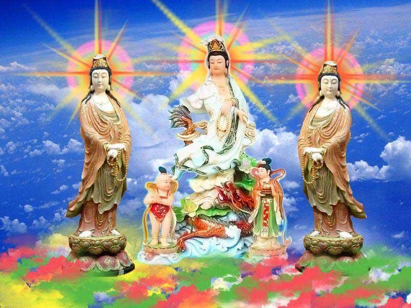 看吧,看完一定天天是好日 - wangqingwei421 - wangqingwei421的博客