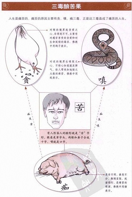 跟着图片轻松学佛…【学佛基础指南,太全了,真的好实用】 - 郑恩丰 - 佛道·易学·人生 交流空间