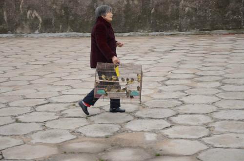 东林寺长江放生 - 《净土》杂志 - 《净土》杂志