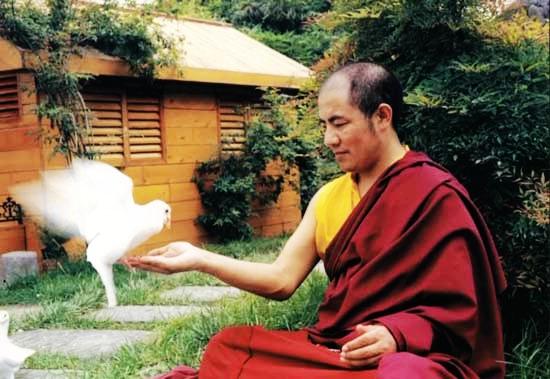 索达吉堪布:从五个方面来修炼菩提心 - 郑恩丰 - 佛道·易学·人生交流空间