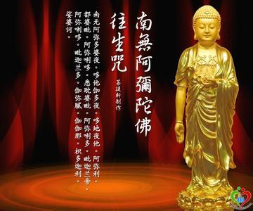 大安法师:何故阿弥陀佛来了,为何不把此人接走 - 郑恩丰 - 佛道·易学·人生交流空间