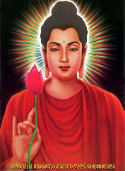 佛陀揭示世上什么事情最痛苦--学佛网 - 芹菜叶子 - 芹菜叶子 的博客
