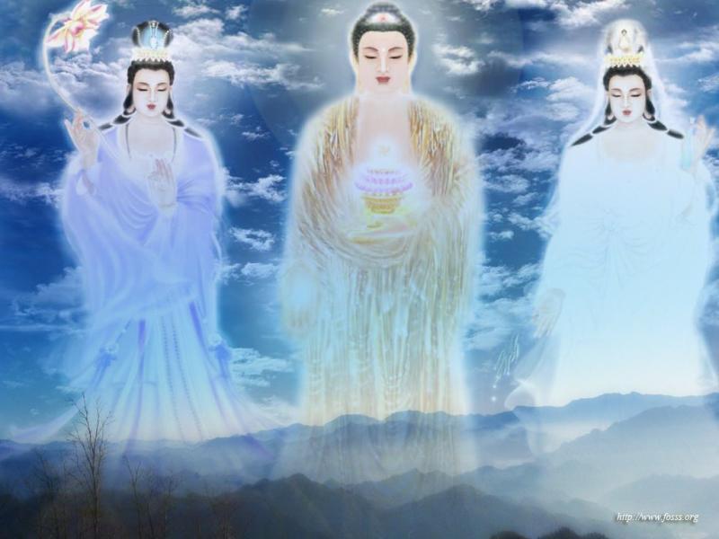 齐豫 习禅/南师怀瑾习禅影录摘选(2)